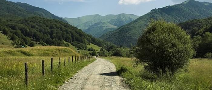 Bosco e vincolo paesaggistico regione che vai for Vincolo paesaggistico